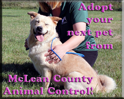 McLean County Animal Control